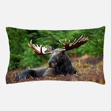 Majestic Moose Pillow Case