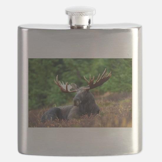 Majestic Moose Flask