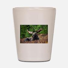 Majestic Moose Shot Glass