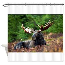 Majestic Moose Shower Curtain