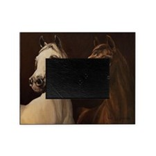 Arabian Mares Picture Frame