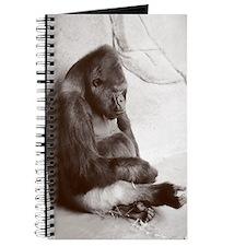 Big Ol Silverback Journal