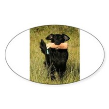 flat coated retriever retrieving Decal
