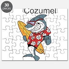 Cozumel, Mexico Puzzle