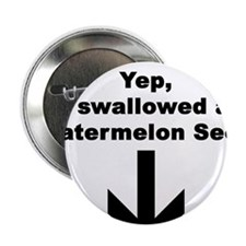"""I SWALLOWED A WATERMELON 2.25"""" Button (100 pack)"""
