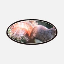 Red Squirrel Patches
