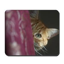 Cat behind curtain Mousepad