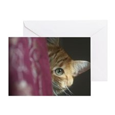 Cat behind curtain Greeting Card