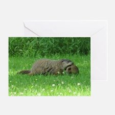 Groundhog and Baby Greeting Cards