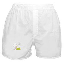 Chemistry Stuff Boxer Shorts