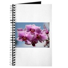 Pink Orchid Journal