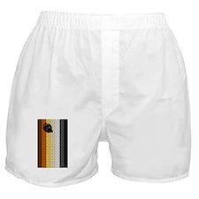 BEAR PRIDE FLAG/BRICK/VERTICA Boxer Shorts