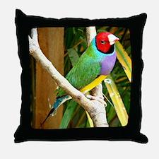 Gouldian Finch Throw Pillow