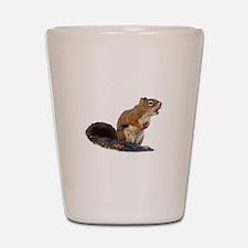 Singing Squirrel Shot Glass