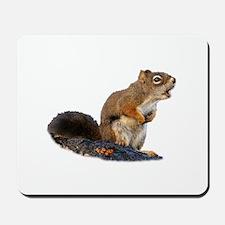 Singing Squirrel Mousepad