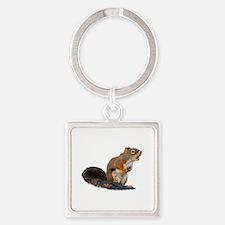 Singing Squirrel Square Keychain