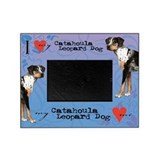 Catahoula leopard dog Picture Frames