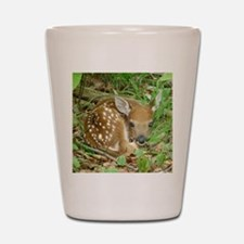 spotted fawn Shot Glass