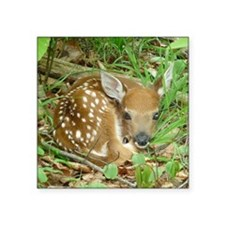 """spotted fawn Square Sticker 3"""" x 3"""""""
