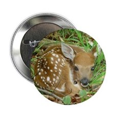 "spotted fawn 2.25"" Button"