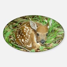spotted fawn Stickers