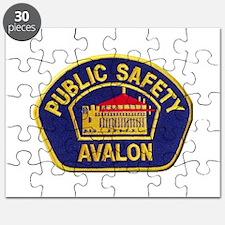 Avalon Public Safety Puzzle