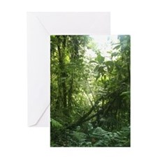 Costa Rican Jungle Card Greeting Cards