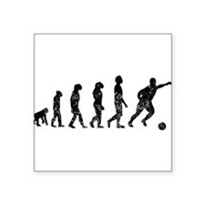 Distressed Soccer Evolution Sticker