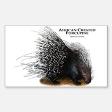 African Crested Porcupine Sticker (Rectangle)