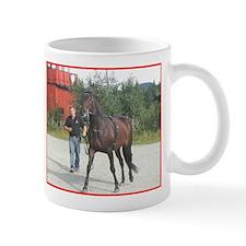 Norway Small Mug