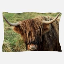 Highland Cow Pillow Case