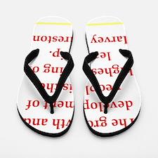 12 Flip Flops