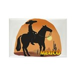Mexican Horse Rectangle Magnet