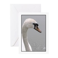 ...Mute Swan... Note Cards (Pk of 10)