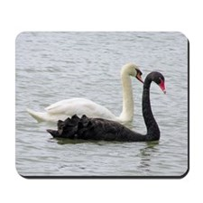 ...Black & White Swans... Mousepad