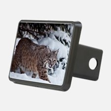 Canadian Lynx Hitch Cover