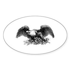 American War Eagle Decal