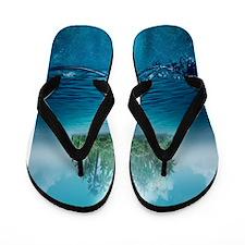 Ocean Island Flip Flops