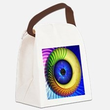 Psychedelic Eye Canvas Lunch Bag
