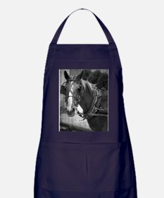 Amish Horse in Black and White Apron (dark)