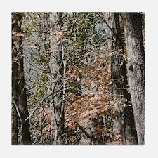 Realistic Tree Forest Camo Tile Coaster