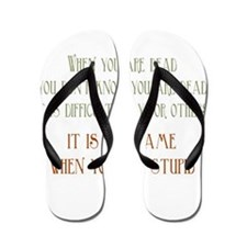 When You Are Stupid Flip Flops