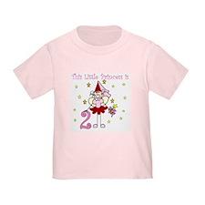 Fairy Princess 2nd Birthday T