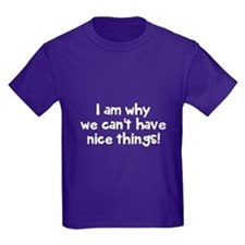 Nice things T-Shirt