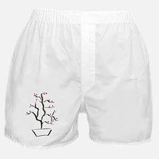 cherry bonsai Boxer Shorts