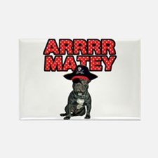 Pirate French Bulldog Rectangle Magnet
