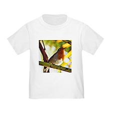 Red Robin bird T-Shirt