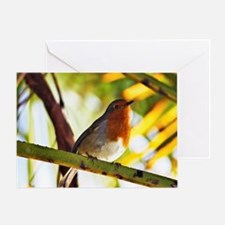 Red Robin bird Greeting Cards