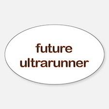 Future Ultrarun Orange Decal