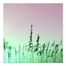sea oats red green florida sunrise Square Car Magn